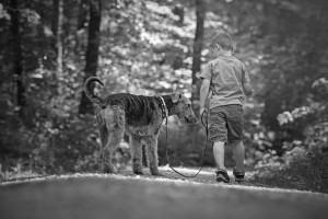08.05.2015_Kind Hund Shooting_sw_38